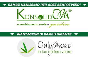Questa immagine ha l'attributo alt vuoto; il nome del file è Consorzio-Bambu-banner.jpg
